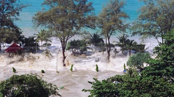 Отели попавшие на пхукете под цунами